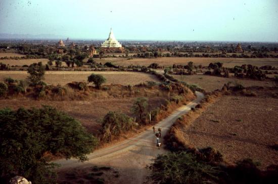 PAGAN en avril 1981