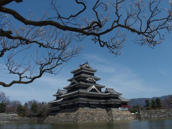 MATSUMOTO : début de sakura et le château