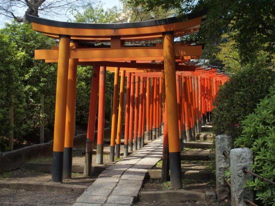 TOKYO : le chemin de toriis au sanctuaire NEZU
