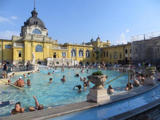 Les fameux bains Széchenyi
