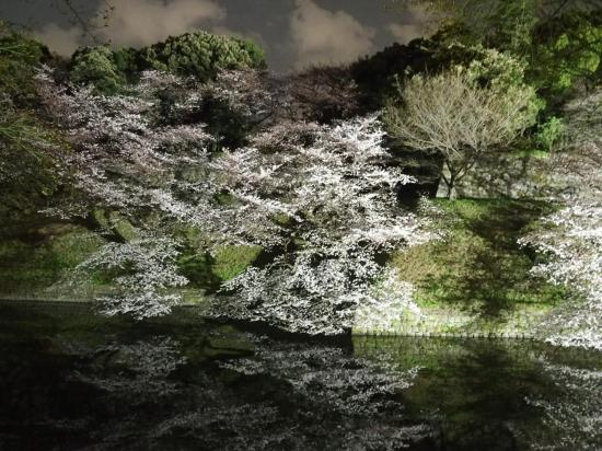 Vision nocturne à CHIDORIGAFUCHI.