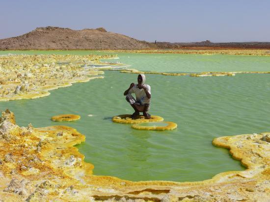 Le DALLOL : l'acide vert
