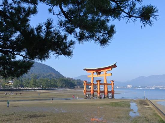 MIYAJIMA : le torii est déjà beau vu de loin