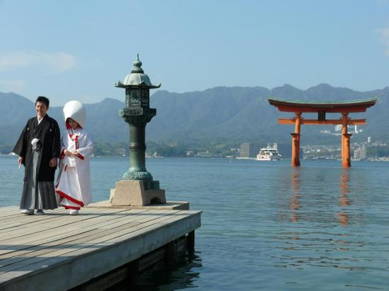 Mariage traditionnel Shinto devant le torii.