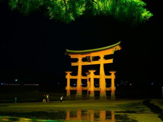 . . . et la nuit le torii est divinement éclairé . . .